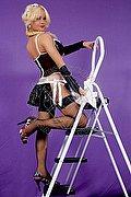 Trans Escort Grosseto Barbie Bionda Calibre 339.8463786. foto 1