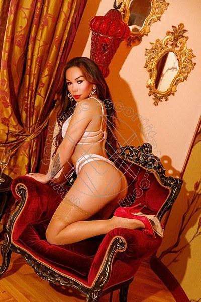 Foto 18 di Malena Bellezza Esclusiva transescort Savona